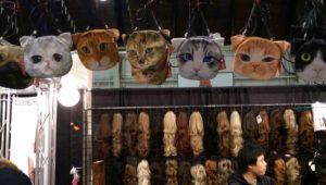 CatsNWigs